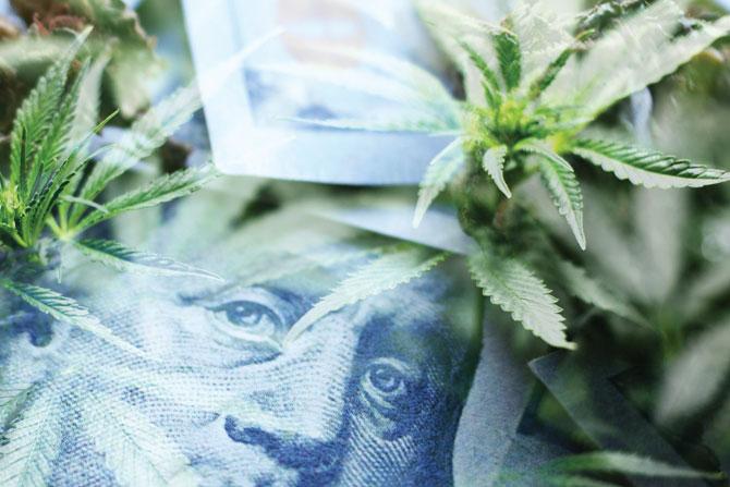 intrintracacies-of-Cannabis-bankingacacies-of-Cannabis-banking